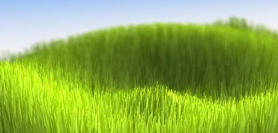 Des herbes en WebGL