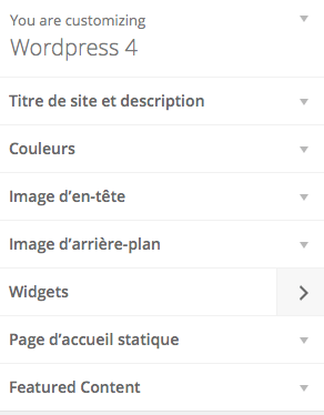 customisation-widget-wordpress-4