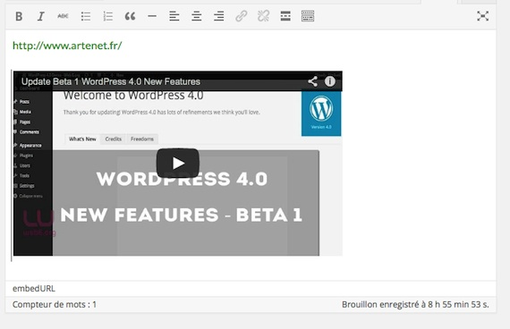 video-pre-visu-wordpress