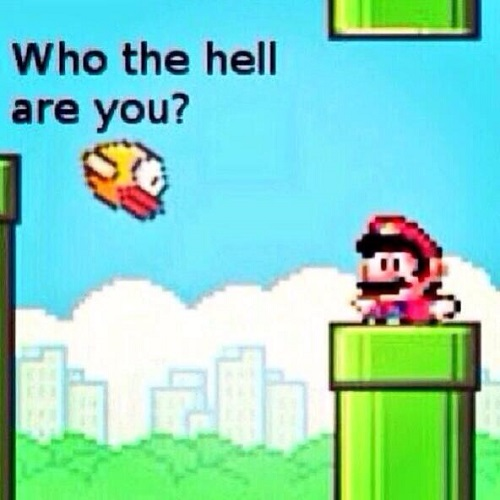 Flappy-Bird-VS-Mario